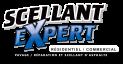 logoscellant_expert3